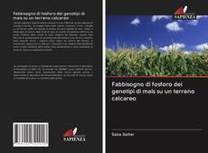 Copertina di Fabbisogno di fosforo dei genotipi di mais su un terreno calcareo