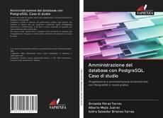 Обложка Amministrazione del database con PostgreSQL. Caso di studio