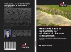 Copertina di Produzione e uso di combustibile per bricchette di biomassa in Bangladesh