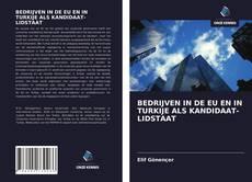 Portada del libro de BEDRIJVEN IN DE EU EN IN TURKIJE ALS KANDIDAAT-LIDSTAAT