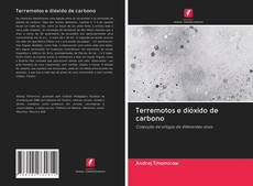 Bookcover of Terremotos e dióxido de carbono