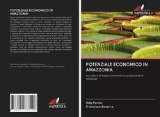Portada del libro de POTENZIALE ECONOMICO IN AMAZZONIA