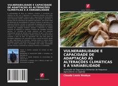 Borítókép a  VULNERABILIDADE E CAPACIDADE DE ADAPTAÇÃO ÀS ALTERAÇÕES CLIMÁTICAS E À VARIABILIDADE - hoz