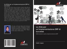 Le sfide per un'implementazione ERP di successo kitap kapağı