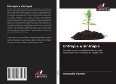 Entropia e sintropia kitap kapağı