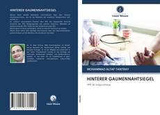 Обложка HINTERER GAUMENNAHTSIEGEL