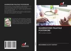 Bookcover of GUARNIZIONE PALATALE POSTERIORE