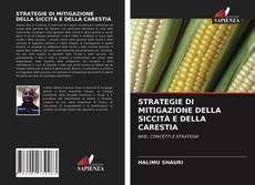 Portada del libro de STRATEGIE DI MITIGAZIONE DELLA SICCITÀ E DELLA CARESTIA