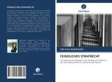 Buchcover von FEINDLICHES STRAFRECHT