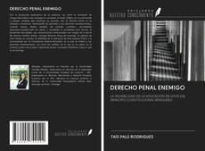 DERECHO PENAL ENEMIGO的封面