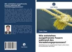 Buchcover von Wie entstehen ausgefranste Fasern während des Veredelungsprozesses?