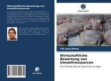Wirtschaftliche Bewertung von Umweltressourcen kitap kapağı