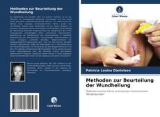 Methoden zur Beurteilung der Wundheilung kitap kapağı
