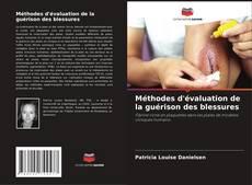Méthodes d'évaluation de la guérison des blessures kitap kapağı