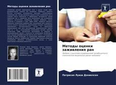 Обложка Методы оценки заживления ран