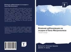 Bookcover of Влияние урбанизации на осадки в Кано Метрополисе