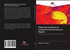 Couverture de Dépenses publiques et croissance économique au Nigeria