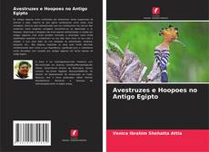 Portada del libro de Avestruzes e Hoopoes no Antigo Egipto