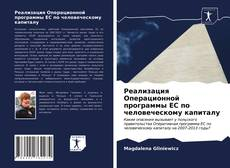Bookcover of Реализация Операционной программы ЕС по человеческому капиталу
