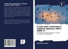Bookcover of Структура капитала в период кризиса 2007-2009 гг.
