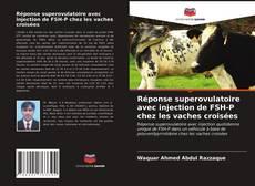 Bookcover of Réponse superovulatoire avec injection de FSH-P chez les vaches croisées