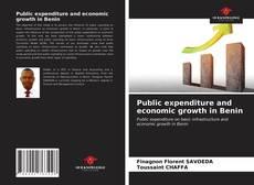 Couverture de Public expenditure and economic growth in Benin