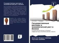 Portada del libro de Государственные расходы и экономический рост в Бенине