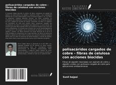 Copertina di polisacáridos cargados de cobre - fibras de celulosa con acciones biocidas