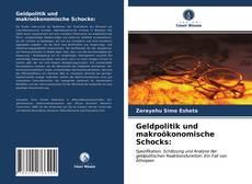 Copertina di Geldpolitik und makroökonomische Schocks: