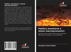 Copertina di Politica monetaria e shock macroeconomici: