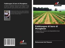 Capa do livro de Fabbisogno di boro di Mungbean