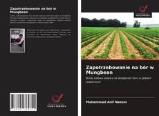 Zapotrzebowanie na bór w Mungbean kitap kapağı
