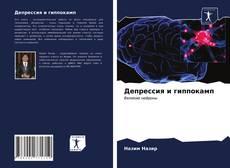 Bookcover of Депрессия и гиппокамп