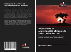 Обложка Produzione di amminoacidi utilizzando substrati autoctoni