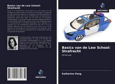 Buchcover von Basics van de Law School: Strafrecht