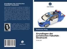 Borítókép a  Grundlagen der juristischen Fakultät: Strafrecht - hoz