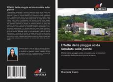 Buchcover von Effetto della pioggia acida simulata sulle piante