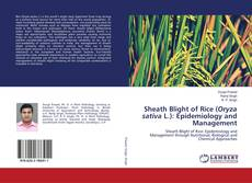Bookcover of Sheath Blight of Rice (Oryza sativa L.): Epidemiology and Management