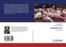 Capa do livro de Baghdad Zoo
