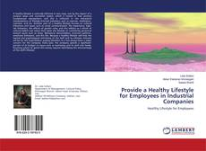 Buchcover von Provide a Healthy Lifestyle for Employees in Industrial Companies