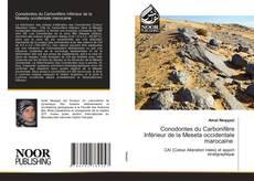 Обложка Conodontes du Carbonifère Inférieur de la Meseta occidentale marocaine