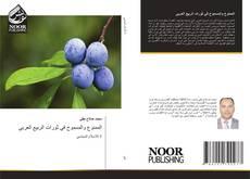 الممنوع والمسموح في ثورات الربيع العربي的封面