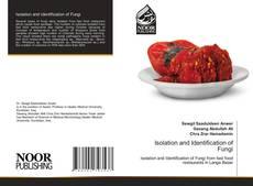 Isolation and Identification of Fungi kitap kapağı