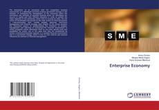 Bookcover of Enterprise Economy