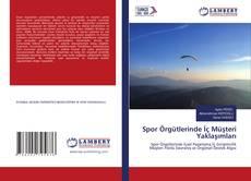 Spor Örgütlerinde İç Müşteri Yaklaşımları kitap kapağı