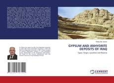 GYPSUM AND ANHYDRITE DEPOSITS OF IRAQ的封面