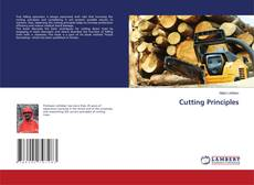 Bookcover of Cutting Principles