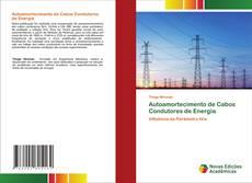Borítókép a  Autoamortecimento de Cabos Condutores de Energia - hoz