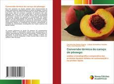 Conversão térmica do caroço de pêssego:的封面