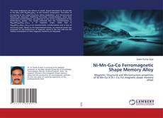 Bookcover of Ni-Mn-Ga-Co Ferromagnetic Shape Memory Alloy